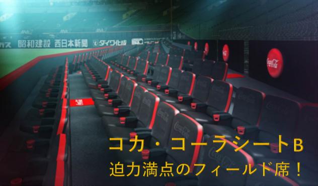 コカ・コーラシートB迫力満点のフィールド席!